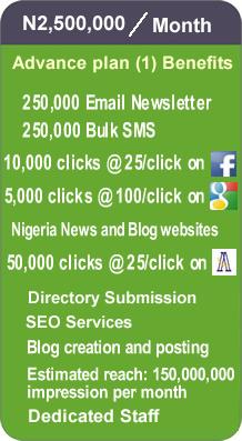 Online20Advertising plan 2500000