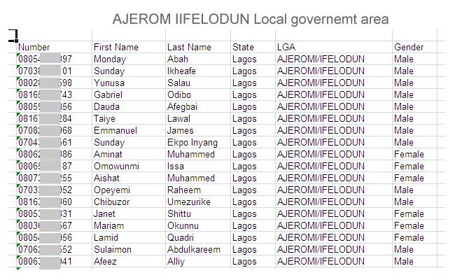 Ajeromi Ifelodun local government area of lagos state